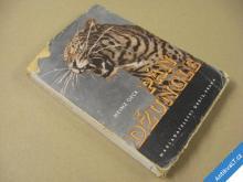 PÁN DŽUNGLE tygři a lidé na Sumatře Geck H. 1944