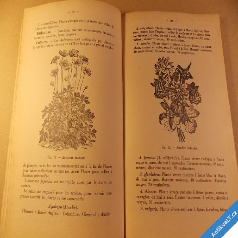 foto Buyssens A. PETIT JARDIN FLEURI zahradní květiny cca 1930 136 ilustr.