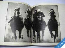 KONĚ  FORMULE 1/1  DIAS JELINEK ČTK PRESSFOTO 1983