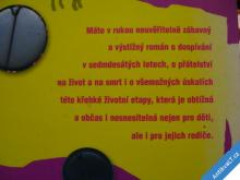 JO BRANDOVÁ  HOLKY TO CHTĚJ JINAK  2007