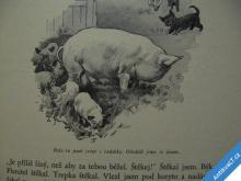 TVŮJ SLUHA PES  KIPLING RUDYARD  1931 VILÍMEK
