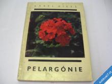 PELARGONIE  HIELKE KAREL  1969